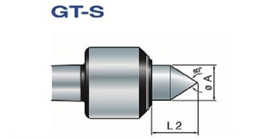 GT-S standard